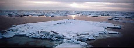alaska_sea_ice2.jpg
