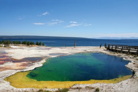 Yellowstone Really Needs To Go Back To Sleep