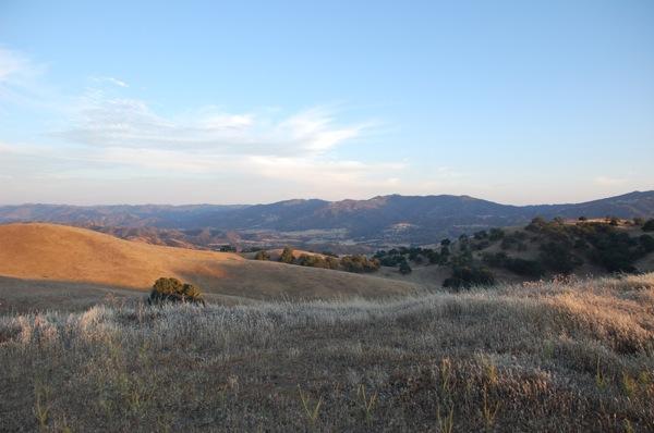 Golden Hills 2.JPG