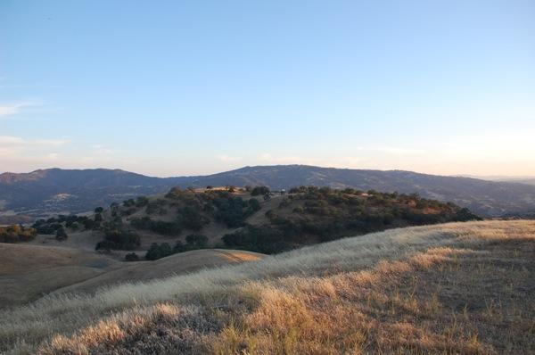 Golden Hills 3.JPG