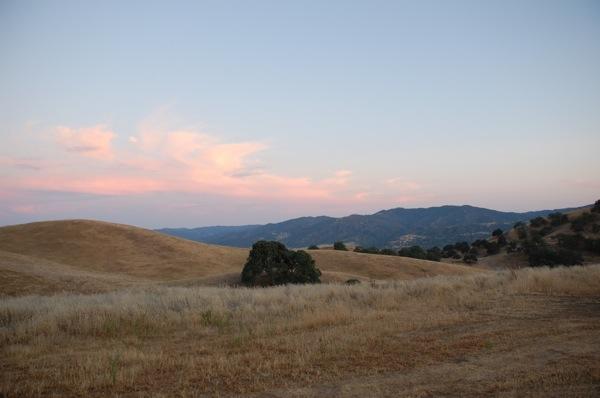 Golden Hills 4.JPG